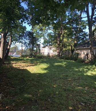 picture of yard